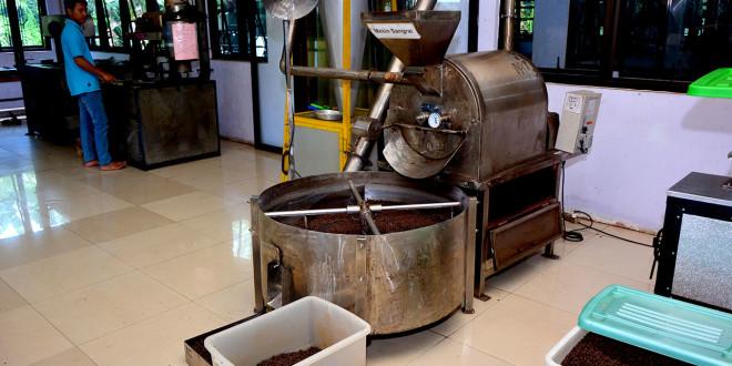 Pelatihan Coffee Roasting and Blending